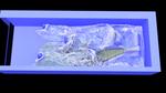 krakatoa realflow.jpg